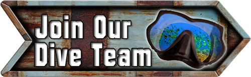 Join Our Dive Team